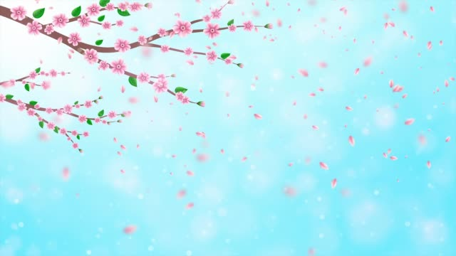 Pink Cherry blossom animation