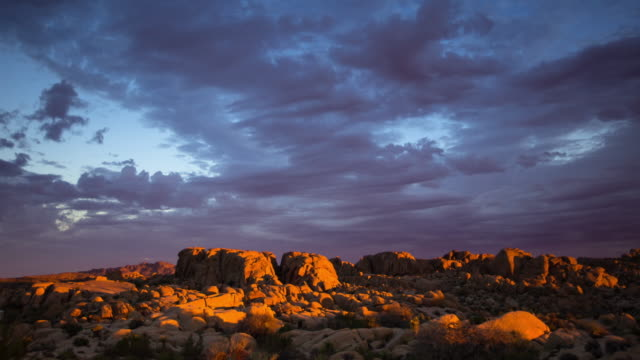 Pink Dawn in Joshua Tree National Park - Time Lapse video