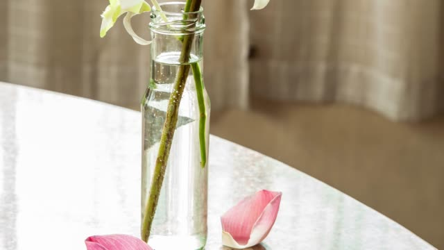 Pink lotus and White orchid in Glass bottle