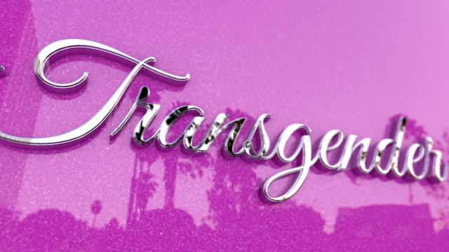 vídeos de stock, filmes e b-roll de título de transgender rosa metálico - gênero humano