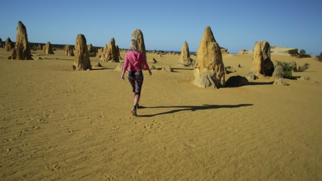 Pinnacles Desert walker video