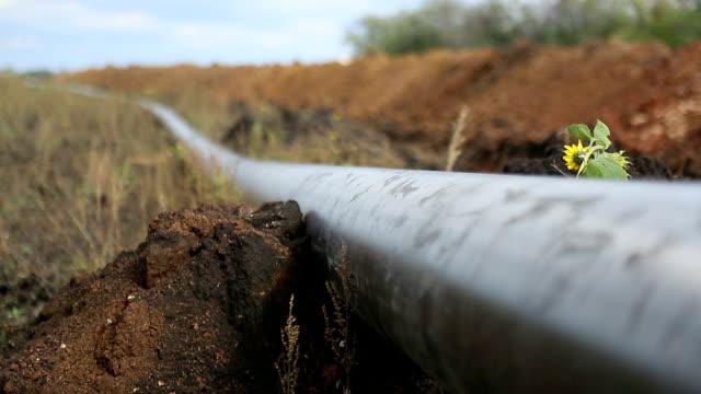 rury pipeline - gaz filmów i materiałów b-roll
