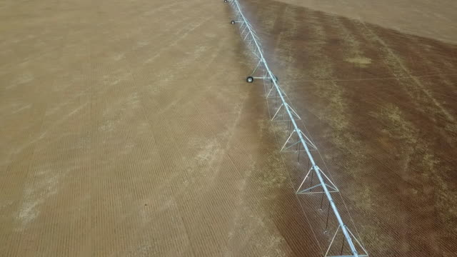 pivot-bewässerung verwendet, um pflanzen auf einem bauernhof zu gießen. kreisende pivot-bewässerung mit drohne - bewässerungsanlage stock-videos und b-roll-filmmaterial
