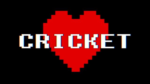 pixel cuore cricket parola testo glitch interferenza schermo senza soluzione di continuità loop animazione sfondo nuovo dinamico retrò vintage gioioso colorato filmati video - full hd format video stock e b–roll