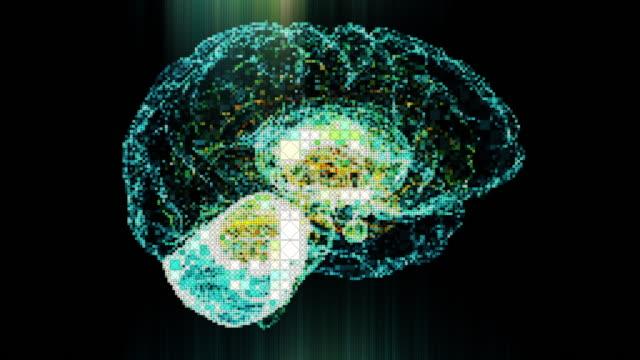 Pixelated Brain