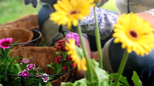 Place Flower in Hanging Basket Left video