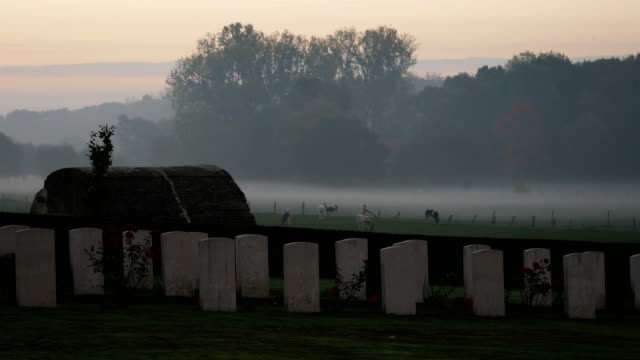 Places of World War One in Belgium: Plugstreet Wood, reconstructed trenches with bunker and barbed wire at sunrise video