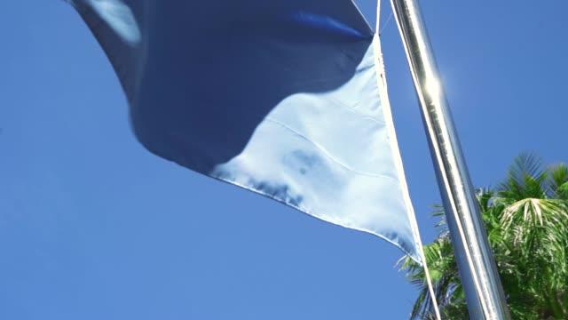 vídeos de stock, filmes e b-roll de bandeira azul simples soprando no ar com um céu azul e palmeiras no fundo - equipamento de esporte aquático