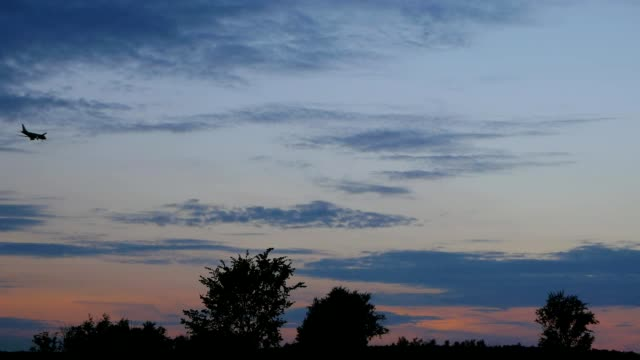 Avión aterrizando en el cielo al atardecer - vídeo