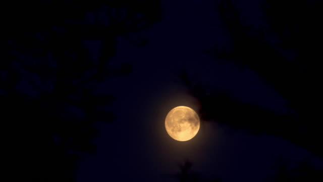 planetary moon video