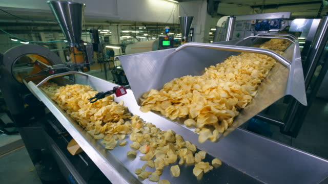 Plant equipment moves fried chips on a line, sorting them. Plant equipment moves fried chips on a line, sorting them. HD prepared potato stock videos & royalty-free footage