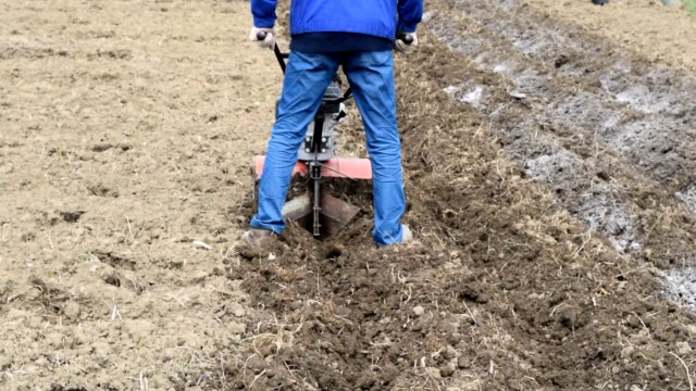 Planting potatoes under the walk-behind tractor video
