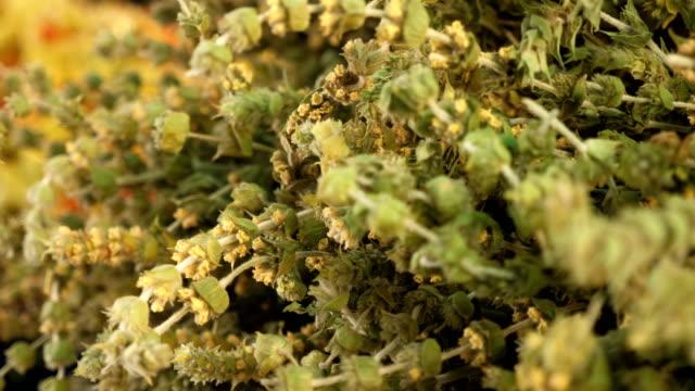 vidéos et rushes de plante, nature, infusions, boissons, health.close up on tea plant - plante aromatique