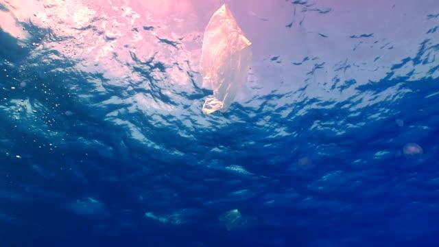 Plastic bag floating in ocean video