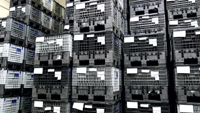 vídeos de stock e filmes b-roll de no compartimento de recipientes de plástico - engradado