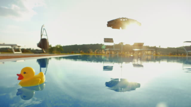 vídeos de stock e filmes b-roll de plastic duck in a summer resort´s swimming pool - brinquedos na piscina