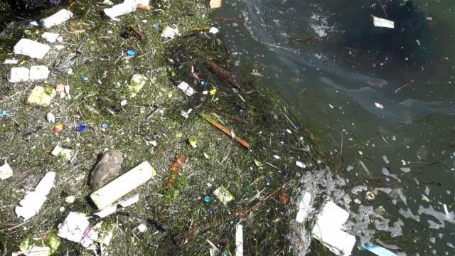 海面に浮かぶプラスチックごみ - 水に浮かぶ点の映像素材/bロール