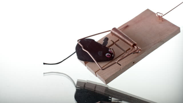 SLO MO LD Plastic mouse falling into a mouse trap