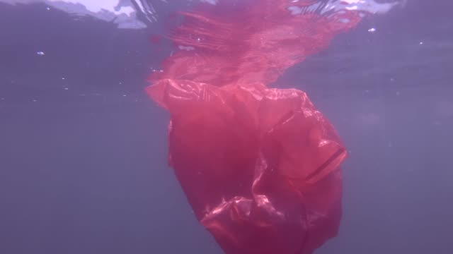 Plastic pollution, a discarded rred plastic bag drifting in the blue water underw surface of water. Underwater shot