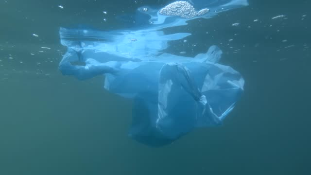 Plastic pollution, discarded blue plastic bag drifting underwater in the blue surface of water. Underwater shot