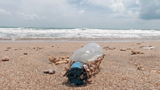 Plastic pollution discarded water bottle on the beach