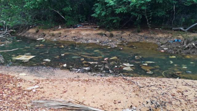 Kunststoffverschmutzung im Süßwasserstrom – Video