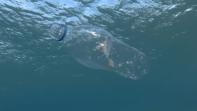 vídeos de stock, filmes e b-roll de poluição plástica, medusa morreu batendo preso em garrafa de plástico. o frasco plástico transparente rejeitado flutua com as medusa inoperantes dentro a superfície na água azul. mar mediterrâneo, europa. - flutuando na água