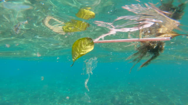 Plastic trash floating in the ocean water