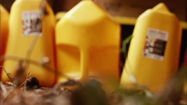 Plastic Yellow Jugs video