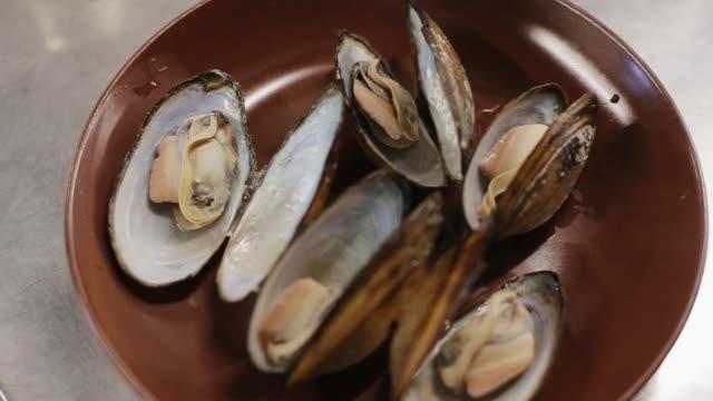 tallrik med bara koktmusslor mellanmål. färska musslor i en brun tallrik - tallrik uppätet bildbanksvideor och videomaterial från bakom kulisserna