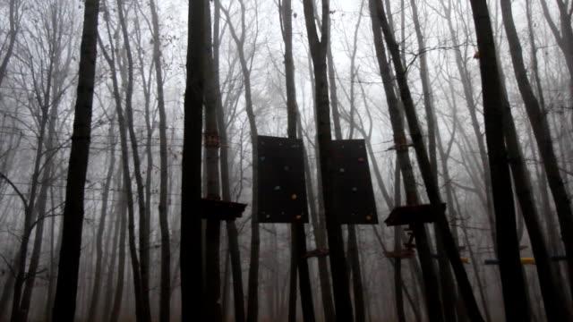 stockvideo's en b-roll-footage met platforms en touw constructies op een bomen van een spooky en mistige bos. - blue sky