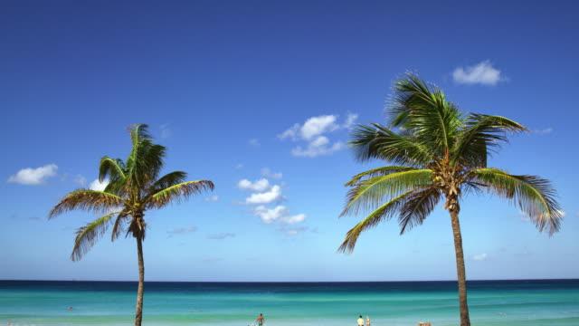strand playa boracoa in kuba - havanna stock-videos und b-roll-filmmaterial