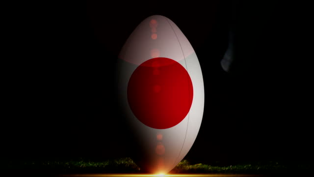 Player kicking japan rugby ball Digital animation of Player kicking japan rugby ball rugby stock videos & royalty-free footage