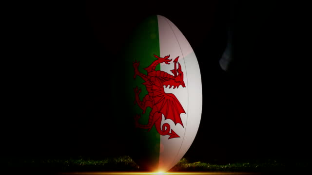 Player kicking wales rugby ball video