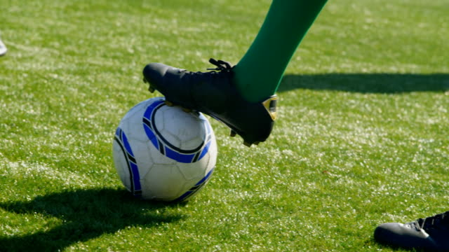 players playing soccer in the field 4k - campionato video stock e b–roll