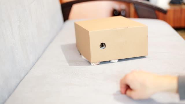 Playful cat in a box of cardboard video