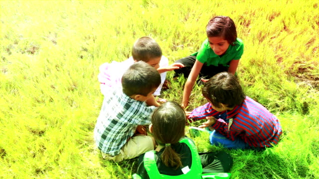 Playful Kids   in the Nature video