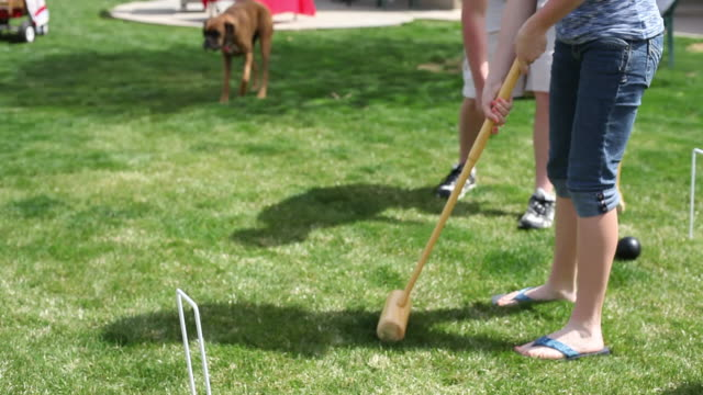 playing croquet - gräsmatta odlad mark bildbanksvideor och videomaterial från bakom kulisserna