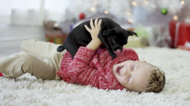 Jugando con el nuevo cachorro - vídeo