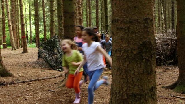 giochi nel bosco - viaggio d'istruzione video stock e b–roll