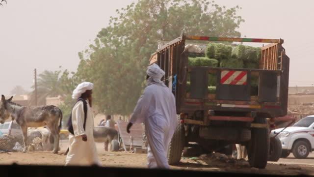 Plaza in Sudan: Truck, donkeys and veiled men video