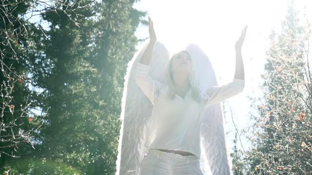 si prega di angelo bianco - angelo video stock e b–roll