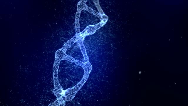 vídeos de stock e filmes b-roll de plexus dna molecule model - hélice formas geométricas