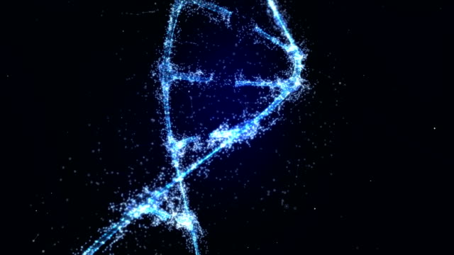 Plexus DNA molecule model
