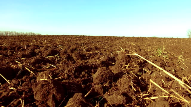 ploughed field and blue the sky steadicam motion agriculture. Abstract perspective view to dark wide wet soil ways, trails, dry rows outdoor Natural brown dirty texture of organic and plowed rural land in country farm, prolific rough surface for outside - vídeo