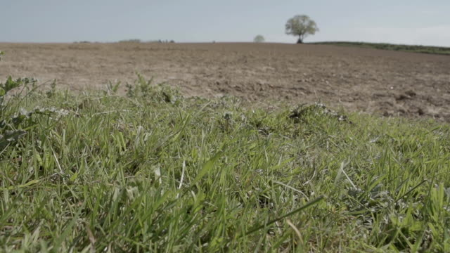 Ploughed Field video