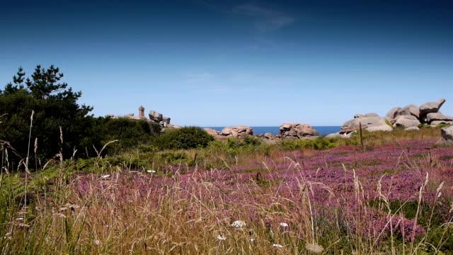 vidéos et rushes de rochers de granit rose de ploumanac ' h. bretagne france - bretagne