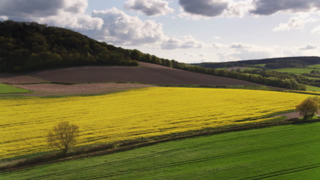 plowed fields and rapeseed in west sussex, england - drone shot - south downs video stock e b–roll