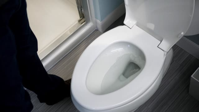 A Plumber test flushes a toilet in modern bathroom