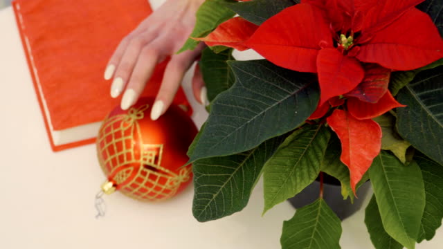 Poinsettia with Christmas toy at the table video